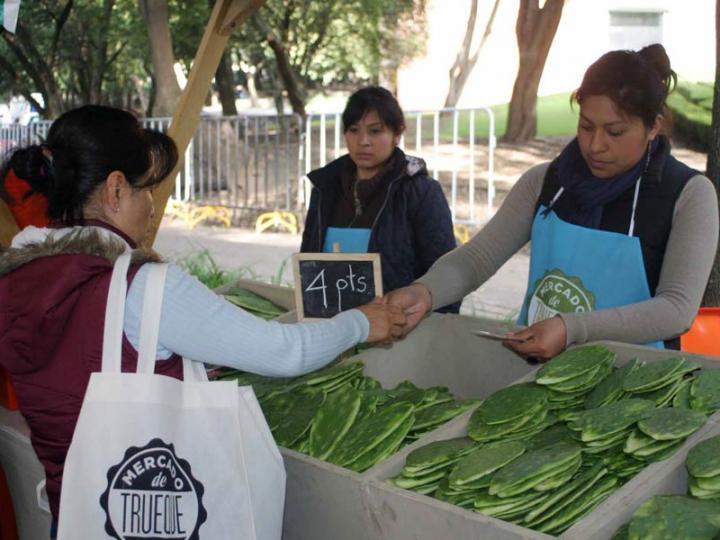 Mercado de Trueque: scambiare...