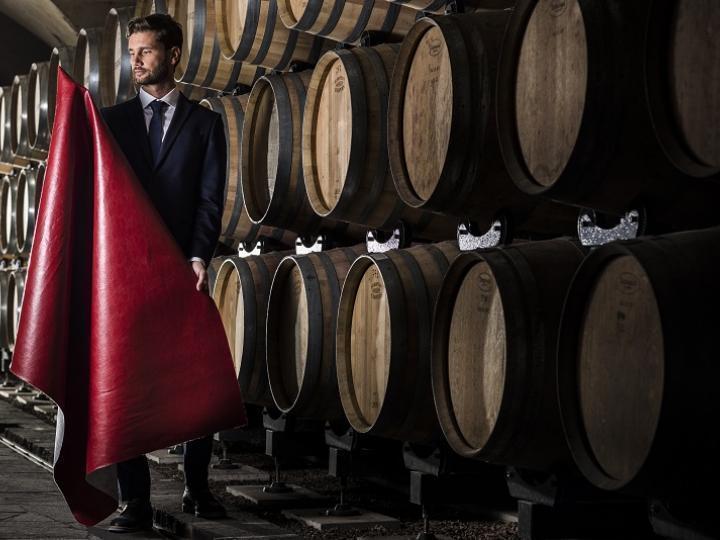 Pelle dagli scarti del vino, è...