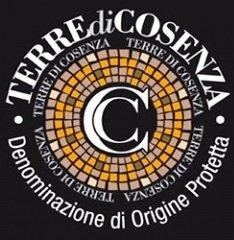 Vini Dop Terre di Cosenza –... 2